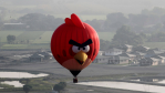Angry Bird in the sky