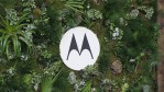 Moto G5 Plus, Motorola, Amazon